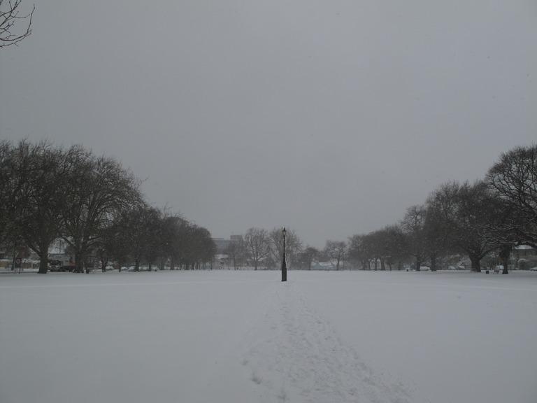 Snow in Cranmer Square