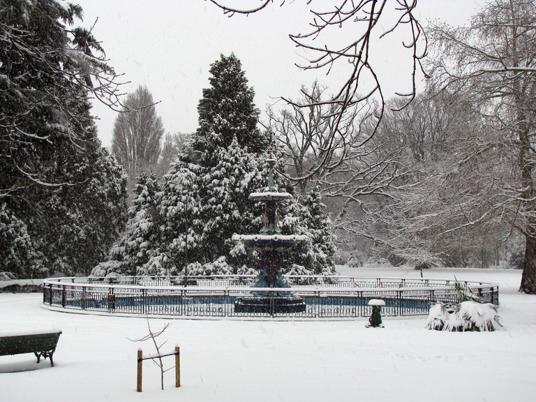 25th Jul 2011 - Snow - Botanic Gardens #1