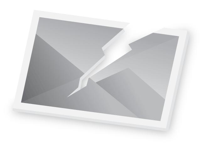 Rose bed in Botanic Gardens