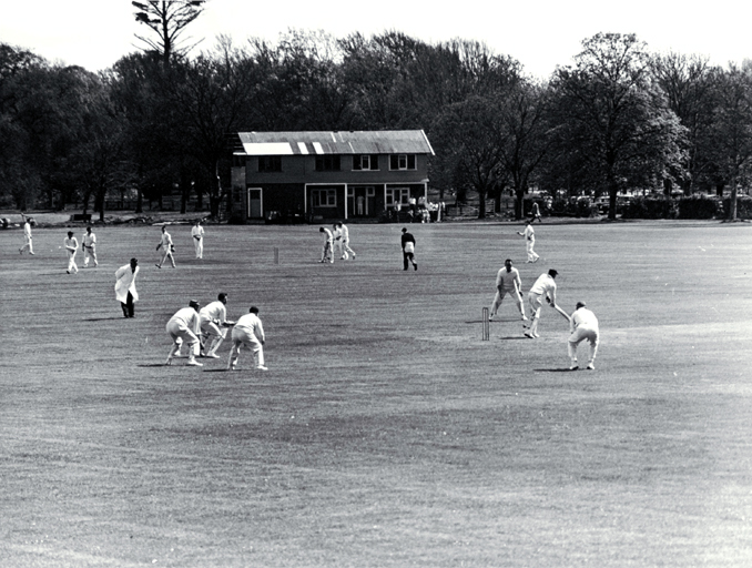Two cricket matches under way in Hagley Park