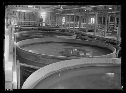 [Waikino Battery - vats/interior processing plant]