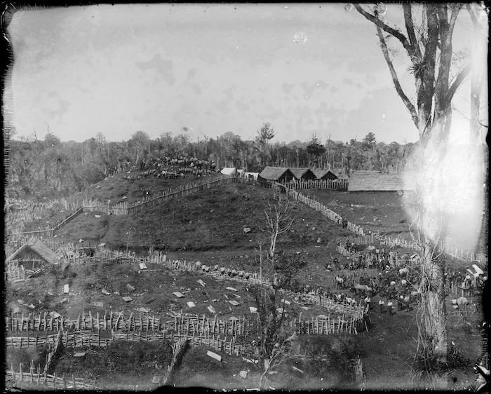 Fort Rolleston, Parihaka