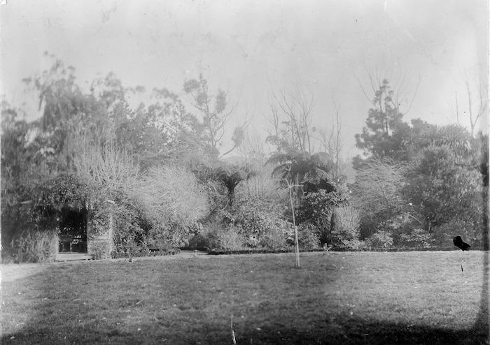 Thomas Mason's garden, Taita
