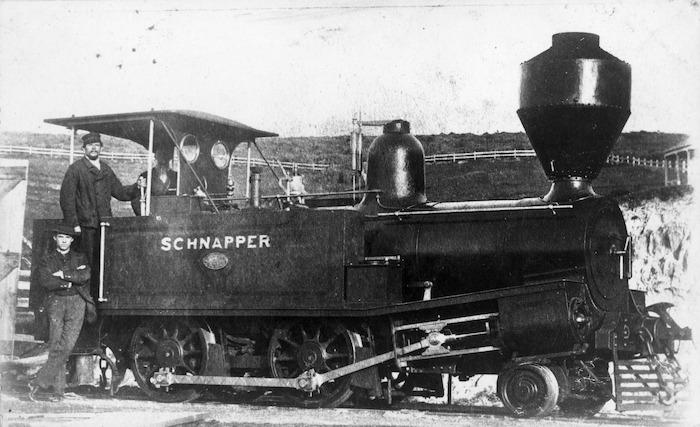 Steam locomotive Schnapper, D class