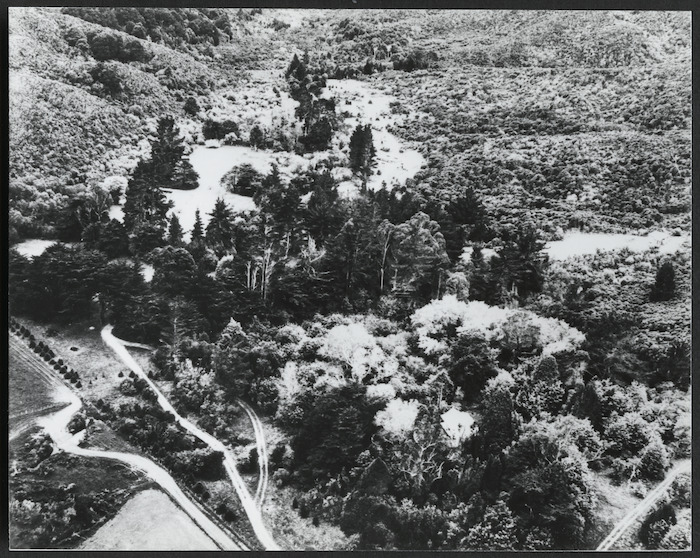 Brookfield scout camp, Moores Valley Road, Wainuiomata