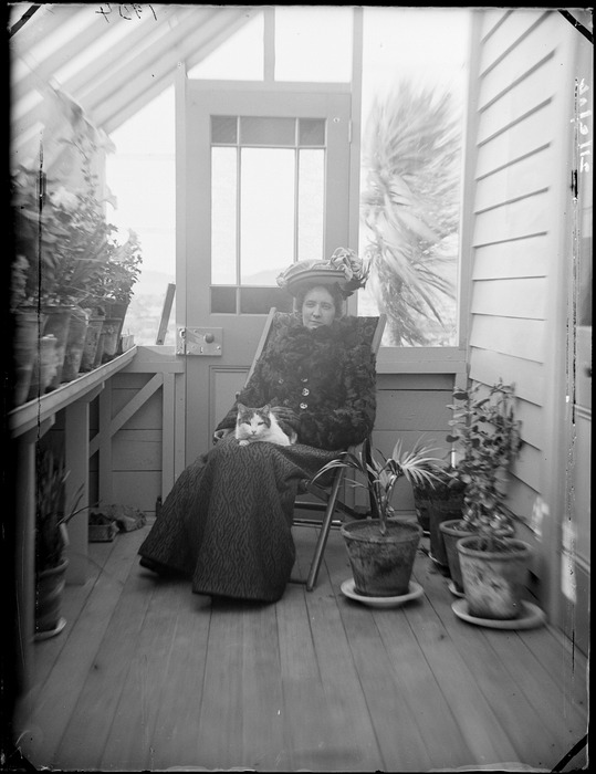 An unidentified woman with cat on lap, sitting in conservatory at Royal Terrace, Kew, Dunedin