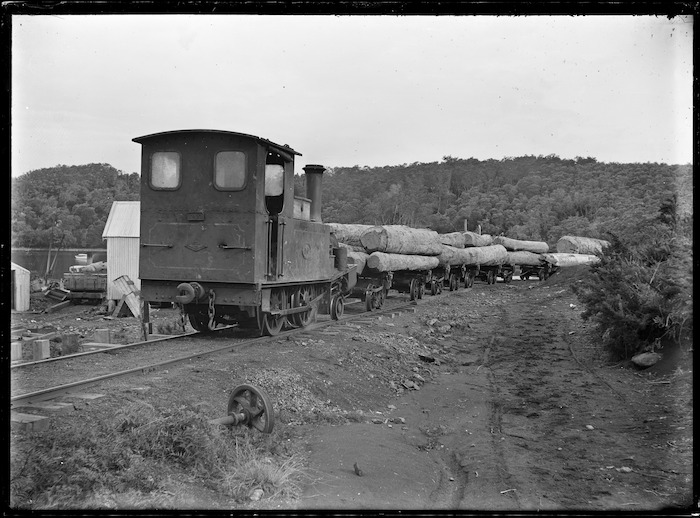 Kauri Timber Company's timber train at Waipapa, laden with logs.