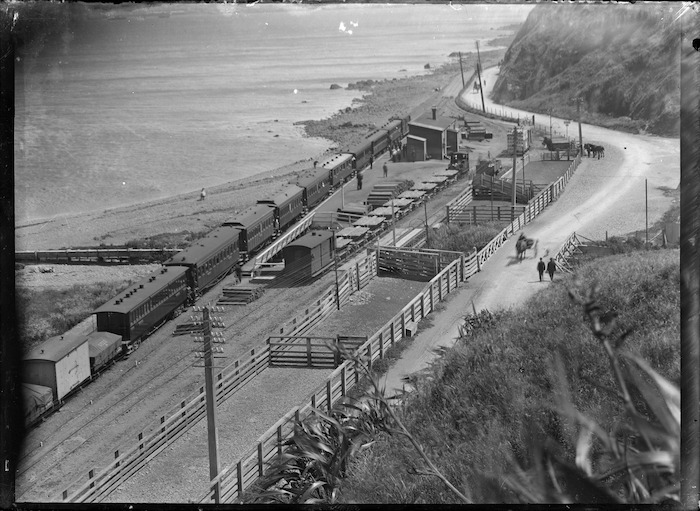 Trains at Ngauranga Station; passenger and goods train travelling north; goods train on a siding, with D class locomotive. Stock-yards alongside the railway lines, ca 1900
