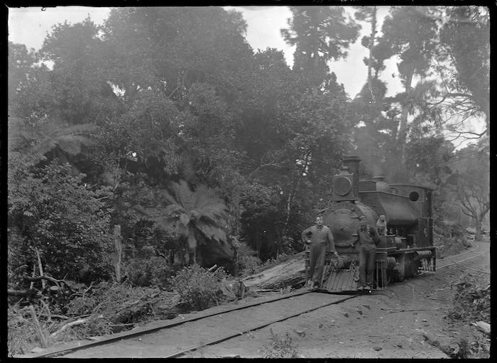 Locomotive in bush, with two men standing alongside.