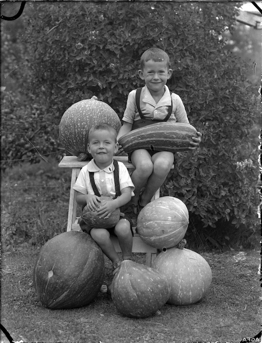 Albert Percy Godber's grandsons, Colin and Norman Hartwig, with marrows and pumpkins, Silverstream