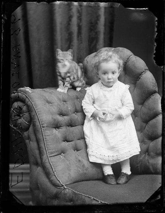 Edwards infant with cat