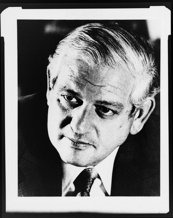 Portrait of Kirk, Norman Eric
