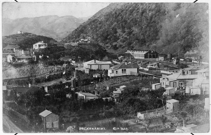 Paekakariki settlement, Kapiti Coast - Photograph taken by David James Aldersley