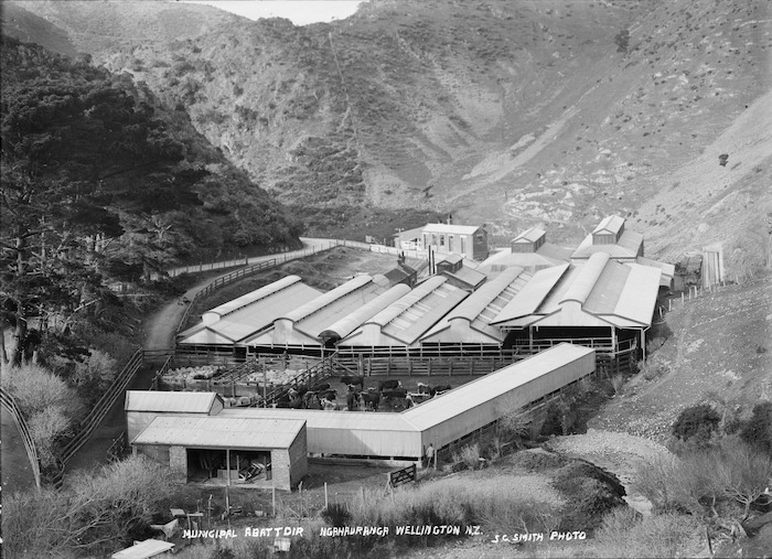 Municipal Abattoir, Ngauranga, Wellington