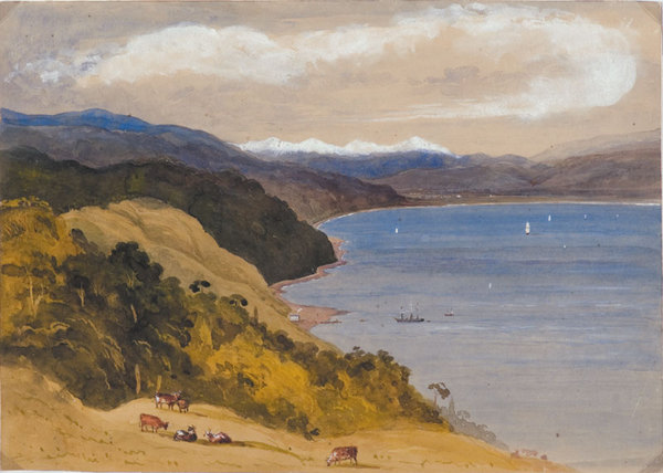 Port Nicholson from the Town Belt Wellington.