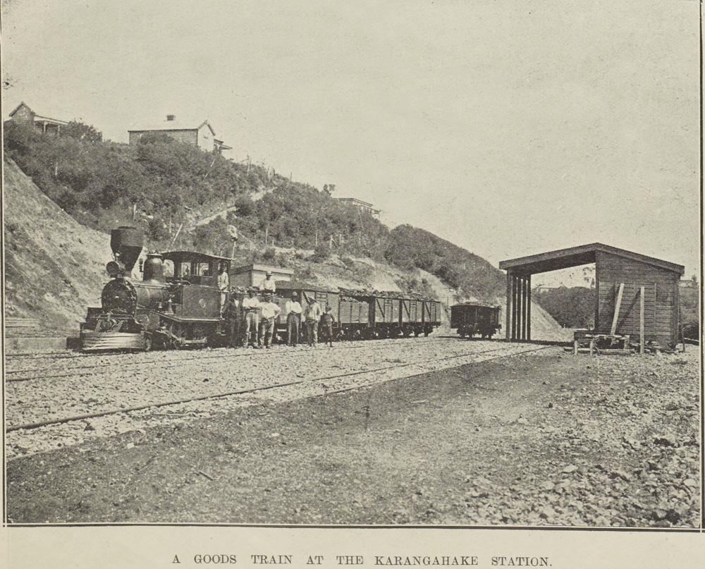 A GOODS TRAIN AT THE KARANGAHAKE STATION.