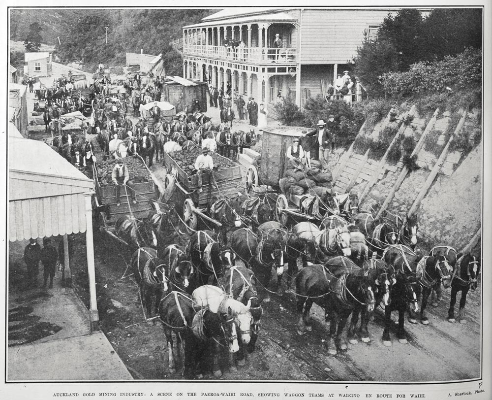 AUCKLAND GOLD MINING INDUSTRY: A SCENE ON THE PAEROA-WAIHI ROAD, SHOWING WAGGON TEAMS AT WAIKINO EN ROUTE FOR WAIHI.