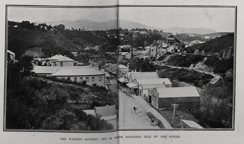 THE WAIKINO BATTERY, ONE OF TH??>RKS RENDERED IDLE BY THE STRIKE.