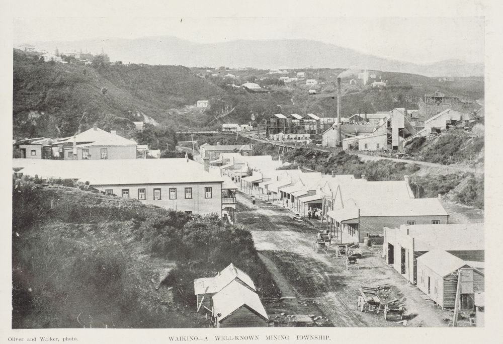 Waikino—a well-known mining township.