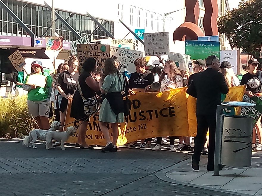 Student protest for action on climate change