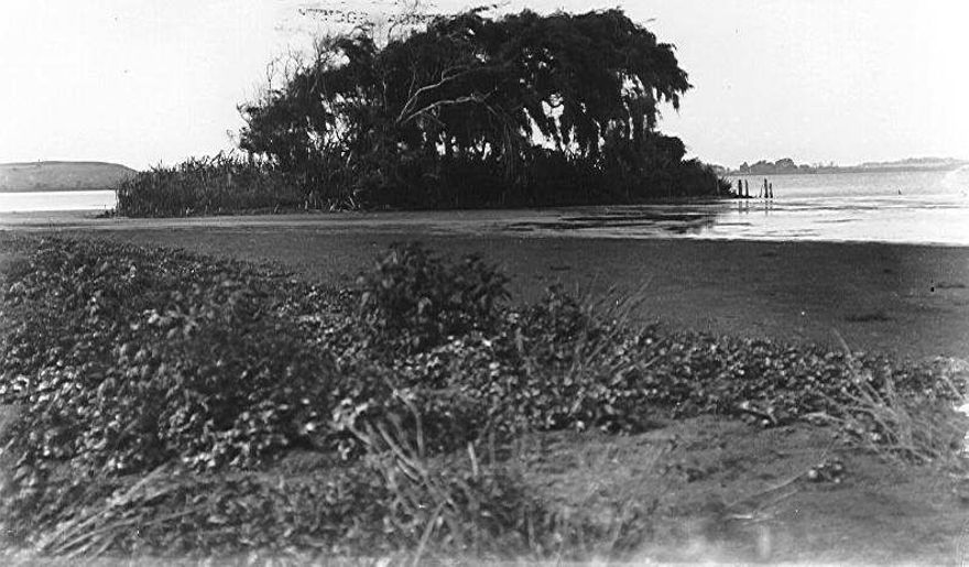 Waipata artificial island, Lake Horowhenua