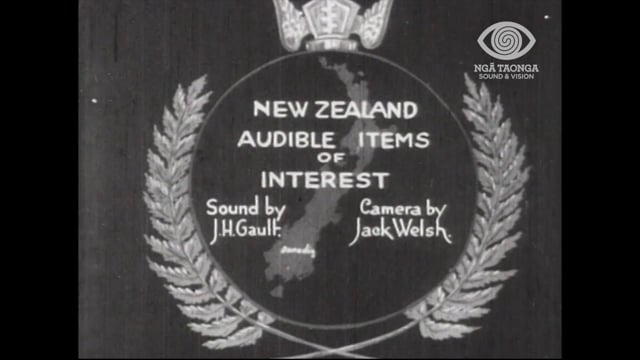 NEW ZEALAND AUDIBLE ITEMS OF INTEREST