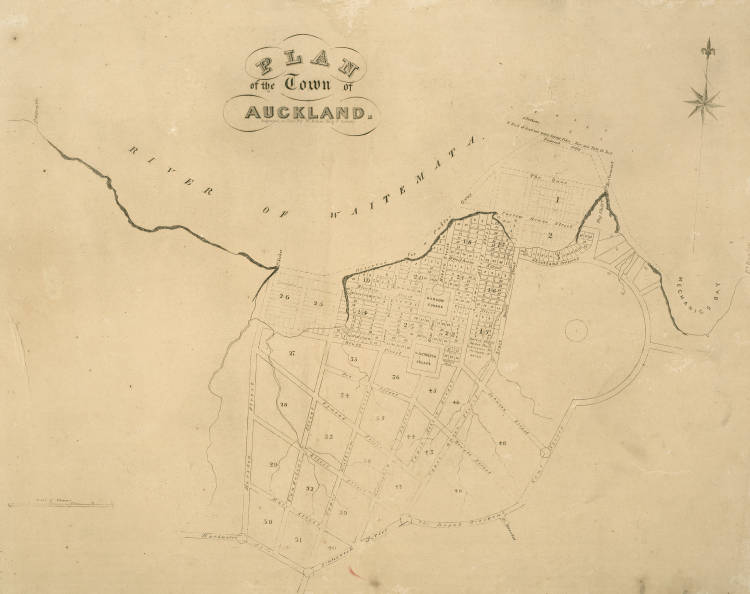 Plan of the town of Auckland