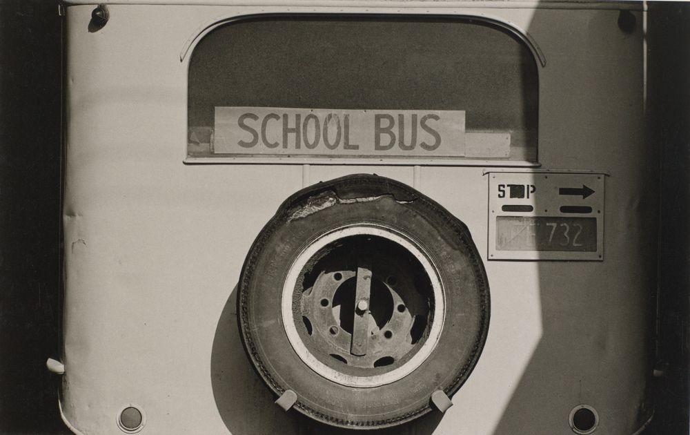 Bus, Coromandel