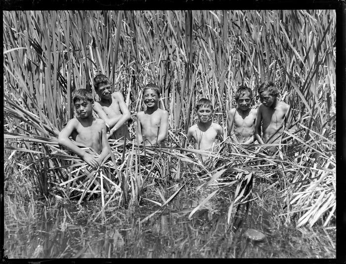 Māori boys wading in raupo reeds, Tokaanu