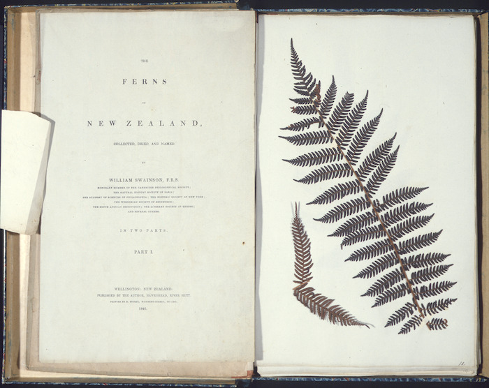 Swainson, William, 1789-1855 :The ferns of New Zealand ... Wellington, the author, 1846 [Title page, plus first page of dried fern specimen]