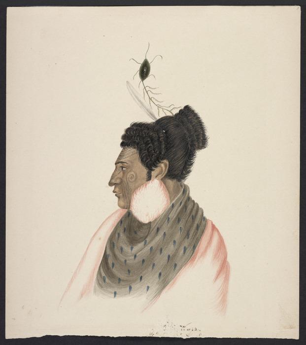 [Coates, Isaac] 1808-1878 :[Rangihaeata, Rauparaha's fighting general. 1843?]