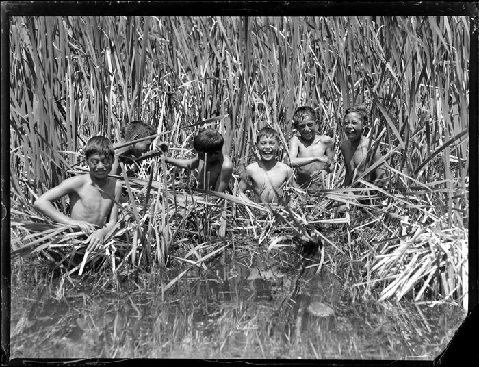 Māori boys swimming amongst the raupō reeds, Lake Taupō
