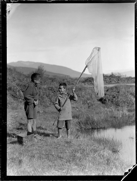 Two Māori boys net fishing, Waikato