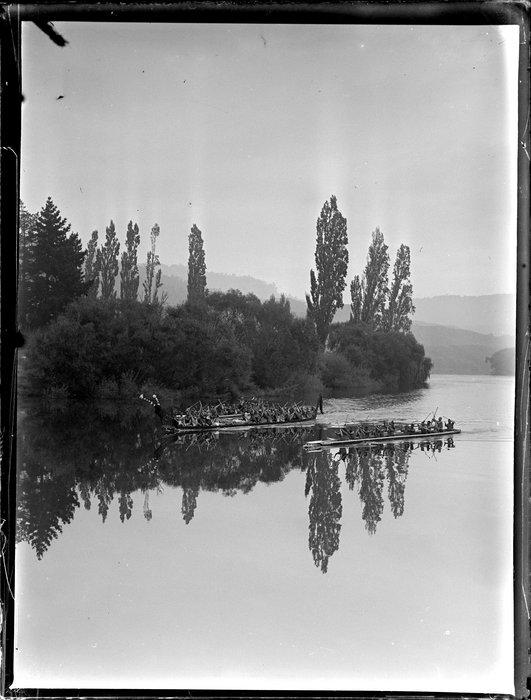 Maori war canoes racing on the river, Waikato