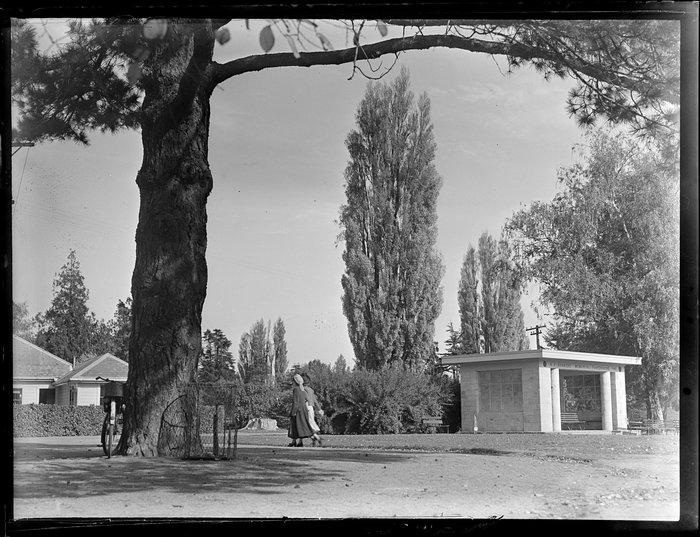 Botanic Gardens, Christchurch, including H F Herbert Memorial Playground Shelter