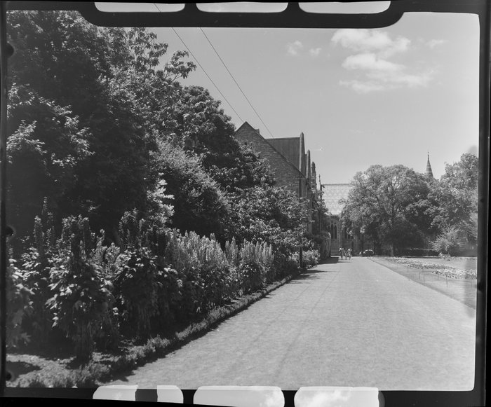 A view of Christs College from the Botanic Gardens, Christchurch