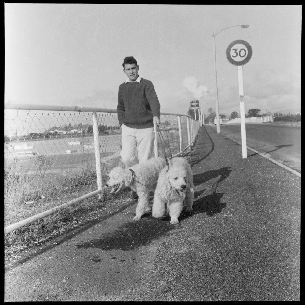 Dennis Hoffman taking dogs for walks