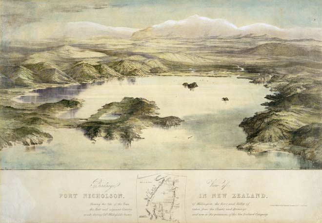 'Birds'-eye view of Port Nicholson'