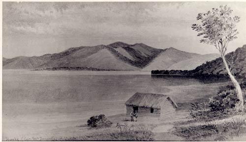 Hōreke, Hokianga