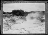 Geothermal pool at Tikitere - Photograph taken by Sigvard Jacob Dannefaerd