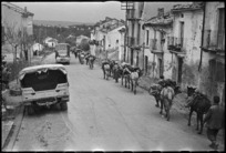 Long procession of mules moving through Castelfrentano, Italy, World War II - Photograph taken by George Kaye