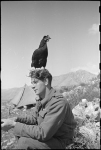 Lulu, the much travelled mascot of 6 Field Advanced Dressing Station, with M Batistich, Italy, World War II - Photograph taken by George Kaye