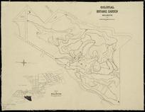 Colonial Botanic Garden, Wellington [cartographic material] / drawn by John Buchanan.
