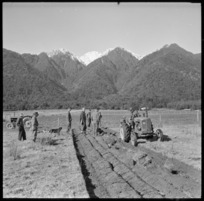 Ploughing demonstration, Fox Glacier
