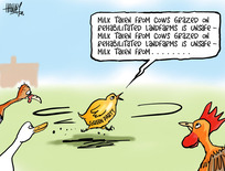 """Hawkey, Allan Charles, 1941- :""""Milk taken from cows grazed on rehabilitated landfarms is unsafe..."""" 6 June 2013"""