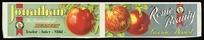 New Zealand Fruitgrowers' Federation :[Apples] Jonathan, the aristocrat of dessert tender, juicy, mild; and, Rome Beauty, luscious dessert / Dominion Mark Fruit. [1931-1935]