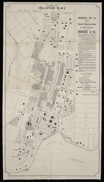 Plan of Island Bay [cartographic material] : all the remaining unsold sections of the subdivision of the Island Bay Racecourse Reserve / W.O. Beere, surveyor.
