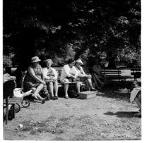 Hagley Park, Christchurch, Country Women's picnic lunch, 1971.