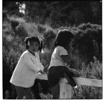 Children in Khouri Avenue, Karori, Wellington, 1971.