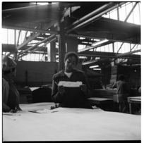 Workers at a plywood factory, Auckland